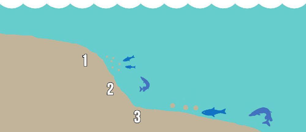 Фидер и бровка, нижняя бровка и свал, рыбалка на бровке